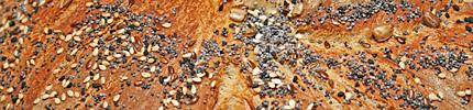 Multigrain bread - closeup of crust