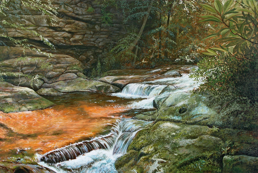 Bear Run, next to Wright's Fallingwater house. Oil on canvas, 24 x 36. ©Patrick J. Lynch, 2017. All rights reserved.