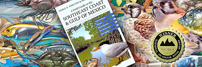Art & cover image for the book A Field Guide to the Southeast Coast & Gulf of Mexico, with National Outdoor Book Award medallion.