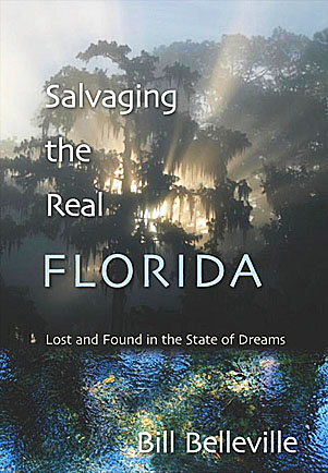 Book cover: Salvaging the Real Florida.