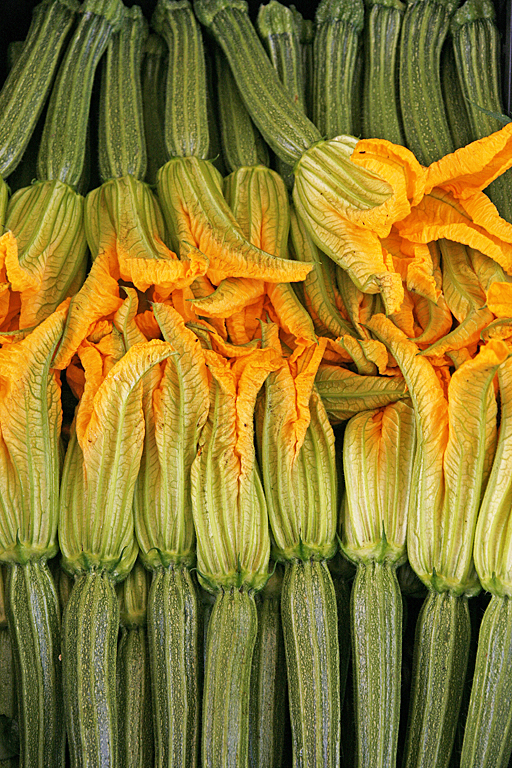 Zucchini flowers, Campo dei Fiore market, Rome, Italy. ©Patrick J. Lynch, 2017. All rights reserved.