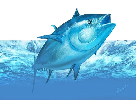 Atlantic Bluefin Tuna illustration by Patrick J. Lynch.