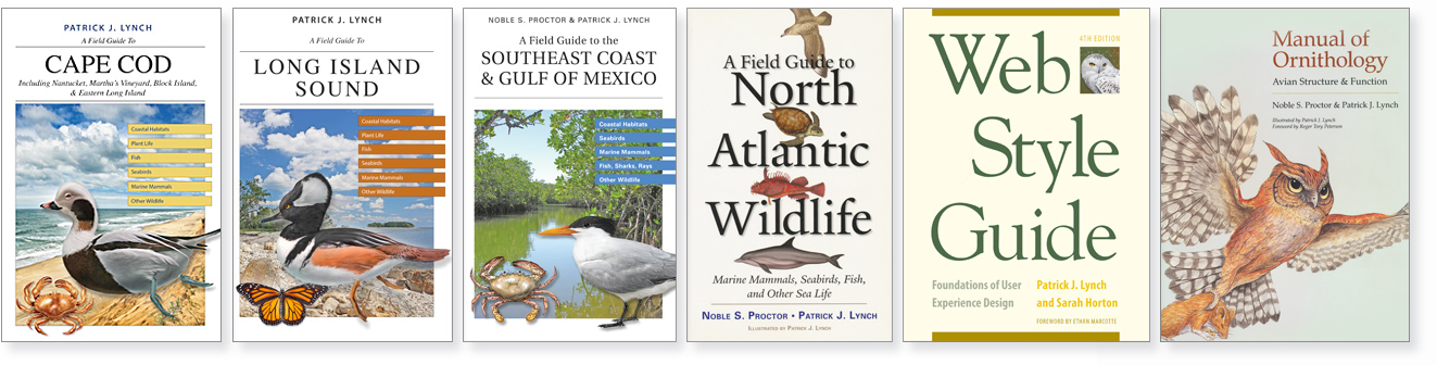 A row of six books by authored or c0-authored by Patrick J. Lynch.